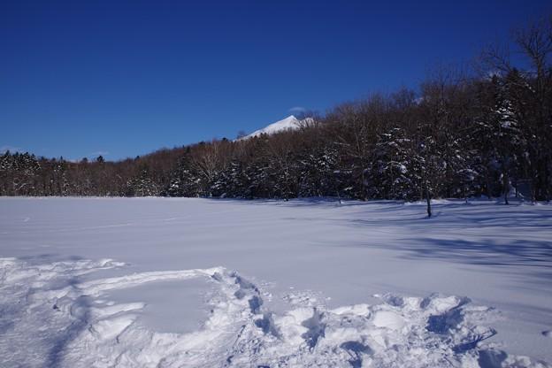 知床五湖・五湖