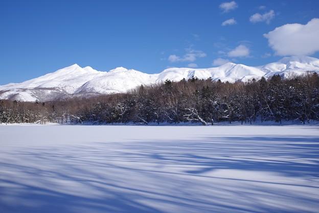 知床五湖・四湖
