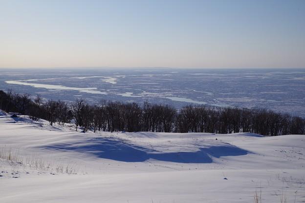 写真: 流氷の海