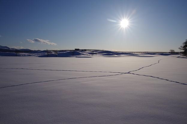 雪原ウォーク