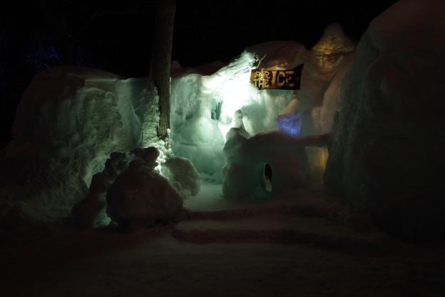 知床流氷フェス
