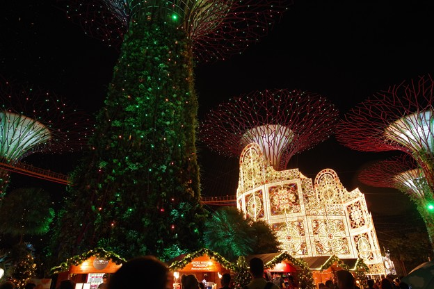Christmas Wonderland at Gardens by the Bay