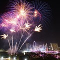 Photos: Chingay Parade Fireworks