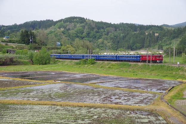 ED75+12系急行津軽