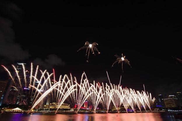 NDP NEShow Fireworks