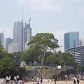 CBD Sydney
