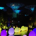 Photos: Futuer Together @ Gardens by the Bay