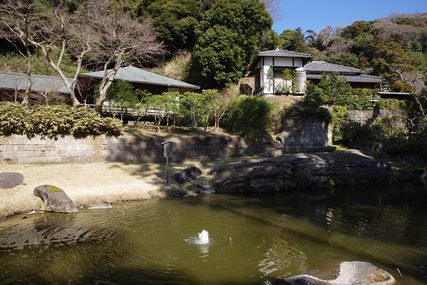 円覚寺庭園(妙香池)