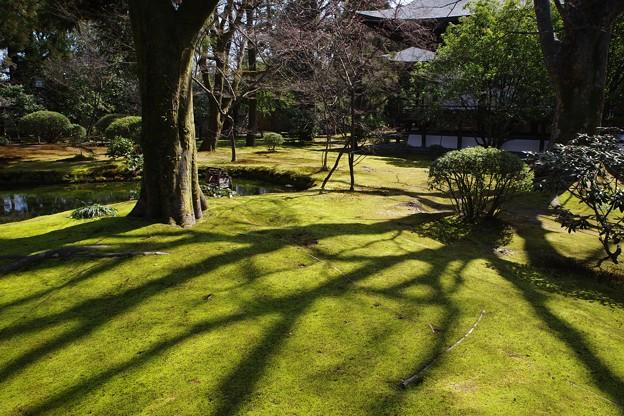 広隆寺庭園