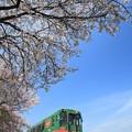 Photos: 春のローカル線
