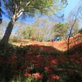 Photos: 秋日和♪
