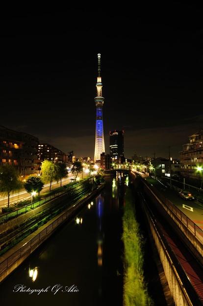 Photos: 空とソラ