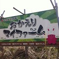 Photos: 俺の農地