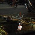 3.11 地震で倒れたままの放置自転車
