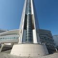 ヨコハマグランドインターコンチネンタルホテルの根っこ