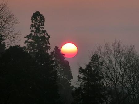ピンクの太陽