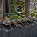 写真: 金蛇水神社・手水舎