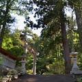 写真: 鳥海山大物忌神社・蕨岡口之宮 二ノ鳥居