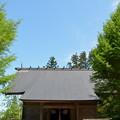 写真: 鳥海山大物忌神社・蕨岡口之宮 社殿