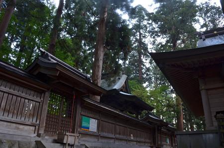 熊野大社・本殿