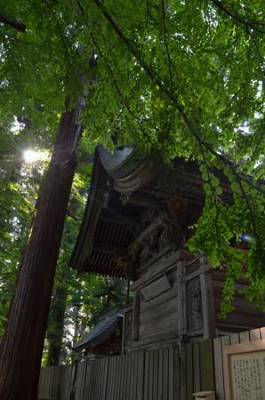 熊野大社・本殿裏