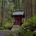 写真: 早池峰神社 大迫・南部稲荷神社
