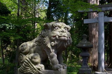 十和田神社・狛犬