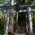写真: 十和田神社・一の鳥居