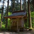 写真: 出羽神社・五十猛神社