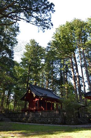 滝尾神社・本殿