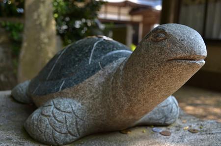 酒列磯前神社・海亀石像