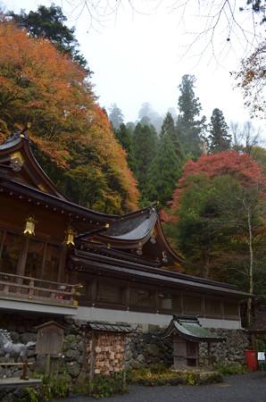 貴布禰神社総本宮・本殿