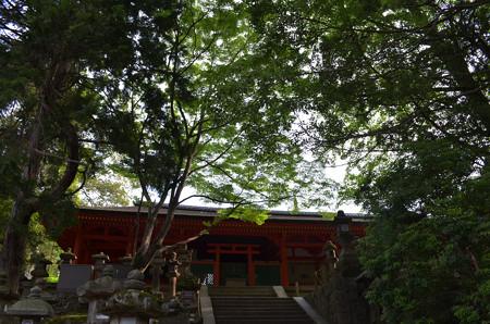 春日大社・榎戸神社
