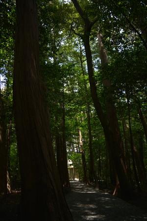 園相神社5