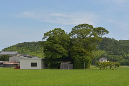 加努弥神社2