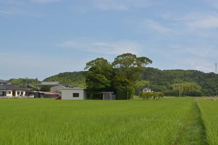加努弥神社3