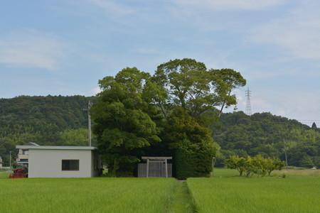加努弥神社4