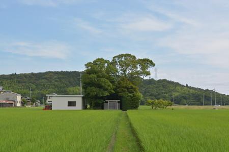 加努弥神社5