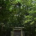 写真: 河原淵神社3
