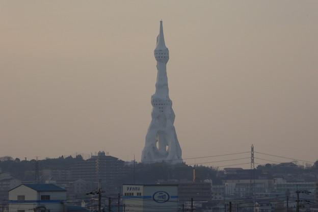 写真: P1000102