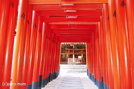 櫛田神社 注連懸稲荷神社2012年08月18日_DSC_0577