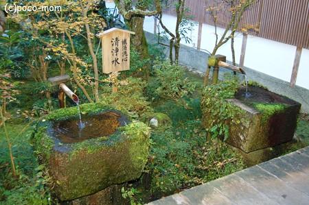 大原三千院 手水舎2012年11月25日_DSC_0019