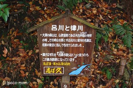 呂川と律川2012年11月25日_DSC_0007