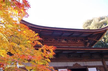 三井寺一切経蔵2012年11月25日_DSC_0144