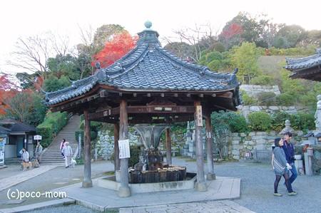 三井寺観音堂手水舎2012年11月25日_DSC_0168