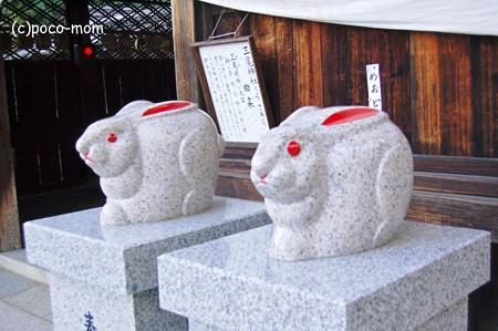 三尾神社 兎2012年11月25日_DSC_0203