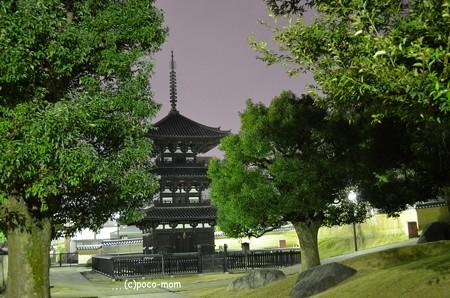 興福寺三重塔2013年01月13日_DSC_0322