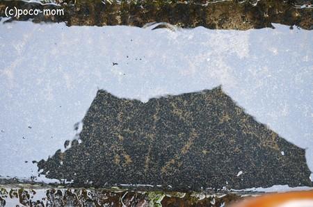ますかけ 東大寺二月堂石段の模様 ますかけ2013年01月14日_DSC_0447