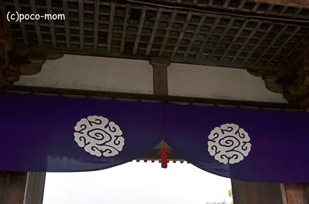 東寺寺紋 八雲 2013年01月14日_DSC_0514