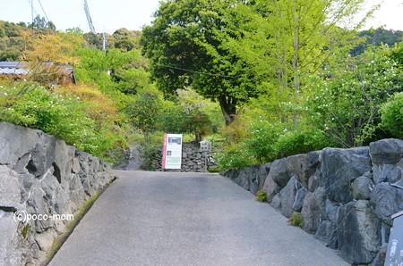 栄山寺 入り口2013年04月28日_DSC_0020